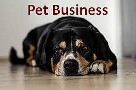 Pet Store | Profitable Small Business Idea