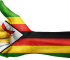 business ideas & opportunities in zimbabwe