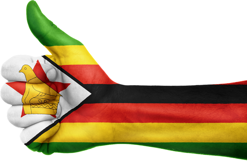 Top 10 Small Business Ideas Investment Opportunities In Zimbabwe