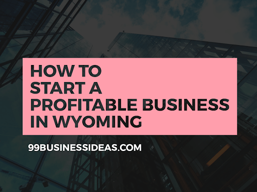 business ideas in Wyoming